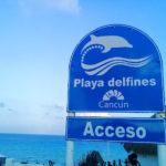 子持ちの私がカンクンの公共ビーチ・ドルフィンビーチをお薦めしない理由。でも良いビーチ!行き方教えます