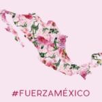 メキシコ地震 救援物資の寄付をしてきました