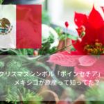 クリスマスシンボル「ポインセチア」は、クリスマスが似合わないメキシコが原産って知ってた?