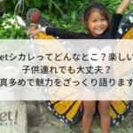 【1】Xcaretシカレってどんなとこ?楽しいの?子供連れでも大丈夫?写真多めでざっくり魅力を語ります。行き方も教えるよ!