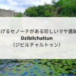 泳げるセノーテがある珍しいマヤ遺跡「Dzibilchaltun(ジビルチャルトゥン)」