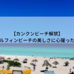 【カンクン公共ビーチ解禁】ドルフィンビーチの美しさに心躍った日